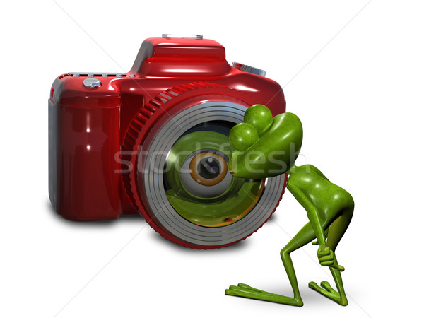 Frog in front of the camera  Stock photo © brux