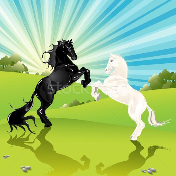 Pair of the horses Stock photo © brux