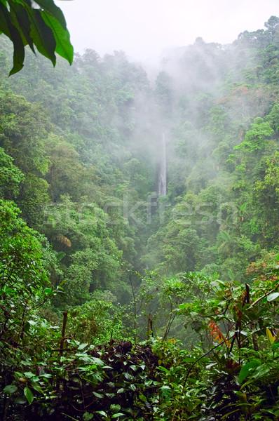 山 ジャングル 霧の コスタリカ 雲 森林 ストックフォト © bryndin