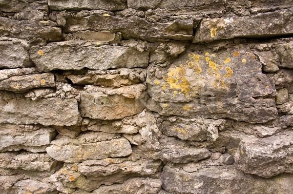 石灰岩 壁 古代 テクスチャ 苔 建設 ストックフォト © bryndin