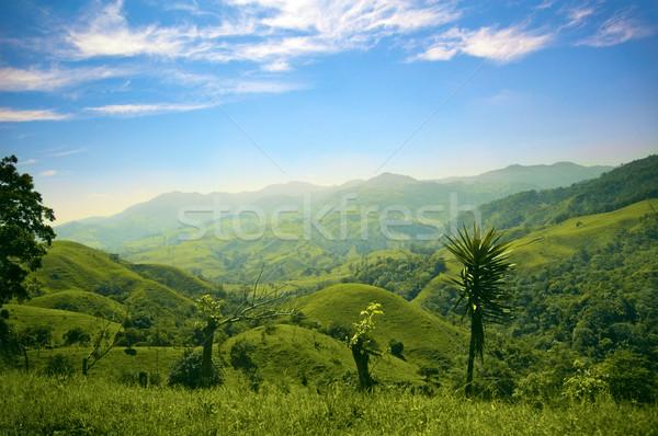 山 丘 山 コスタリカ 草 ストックフォト © bryndin