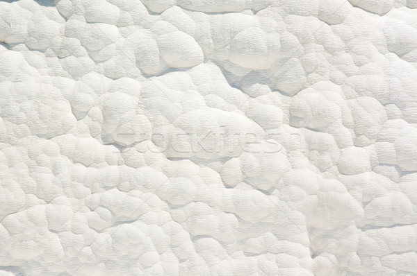 Wall of calcium. Stock photo © bryndin