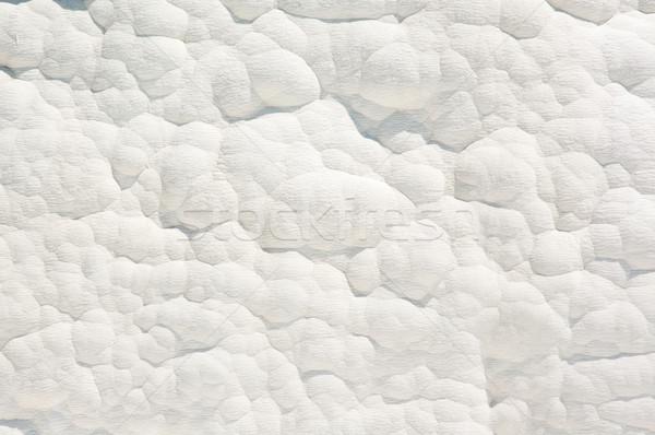 Duvar kalsiyum doğal beyaz güzellik uzay Stok fotoğraf © bryndin