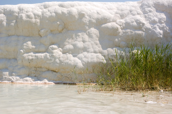 Wall of calcium. Pamukkale. Stock photo © bryndin