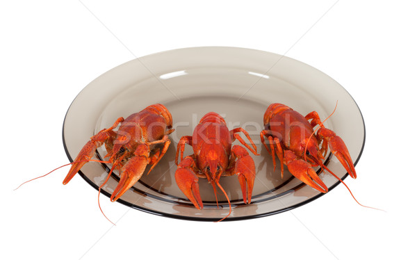 Boiled crawfish on glass plate Stock photo © BSANI