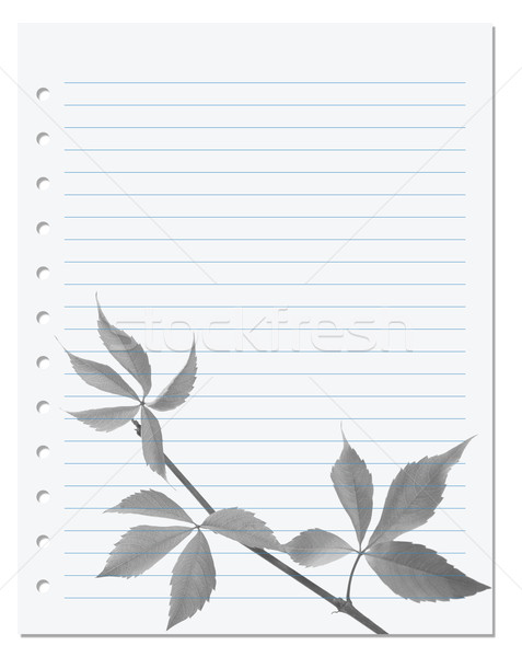 Exercise book with black-white virginia creeper leaf Stock photo © BSANI