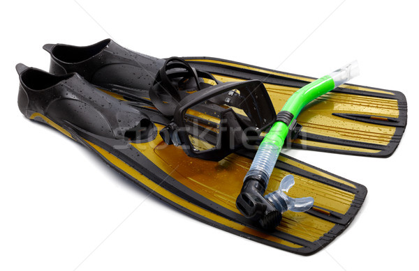 Mask, snorkel and flippers with water drops. Diving gear on whit Stock photo © BSANI