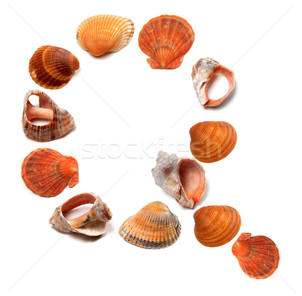 Letter Q composed of seashells Stock photo © BSANI