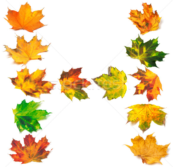 Letter H composed of autumn maple leafs Stock photo © BSANI