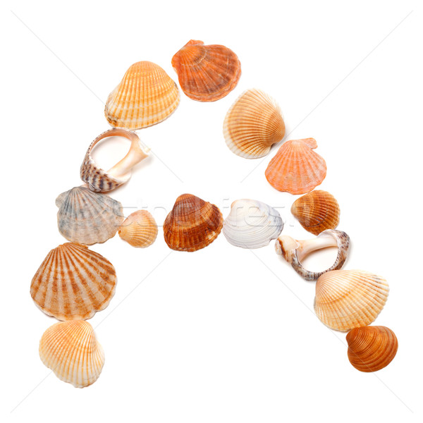 Letter A composed of seashells Stock photo © BSANI
