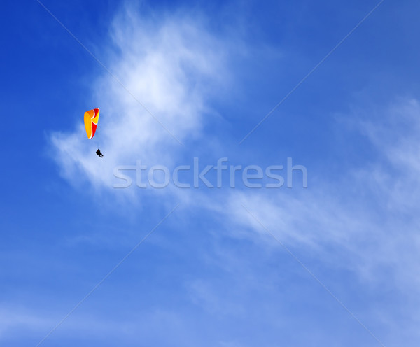 Skydivers in blue sky at sun day Stock photo © BSANI