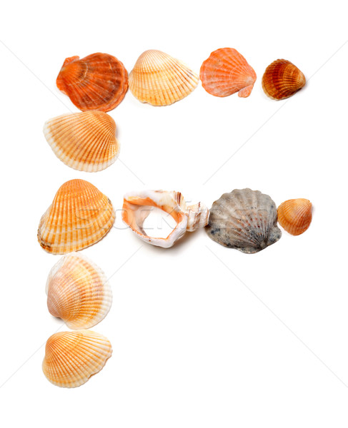 Letter F composed of seashells Stock photo © BSANI
