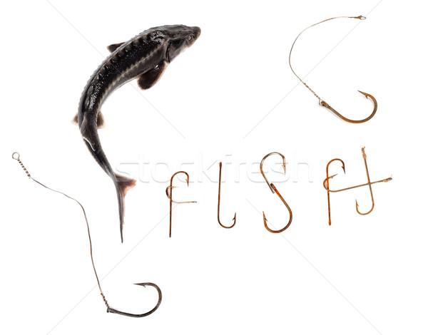 Fraîches mot vieux rouillée poissons isolé Photo stock © BSANI