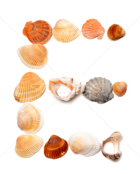 Letter E composed of seashells Stock photo © BSANI