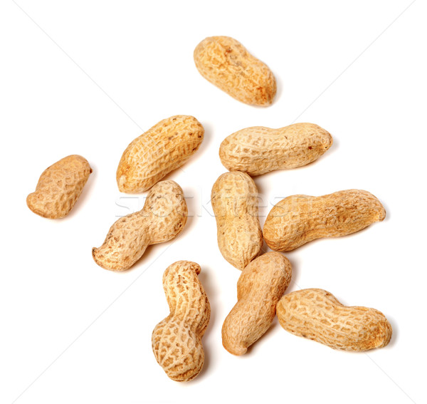 Unpeeled peanuts Stock photo © BSANI