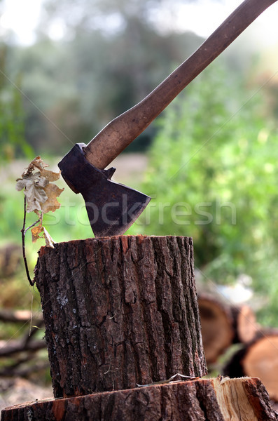 Axe in oak stump Stock photo © BSANI