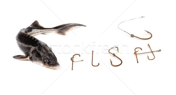Frischen Wort alten rostigen Fisch isoliert Stock foto © BSANI