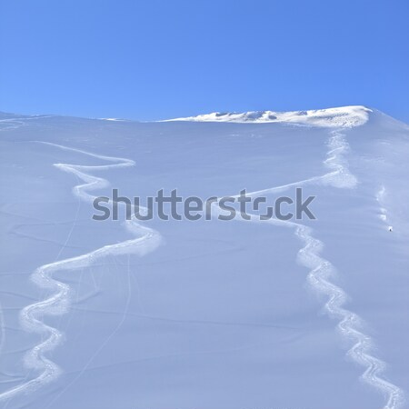 Trace from ski on off-piste slope in early morning Stock photo © BSANI