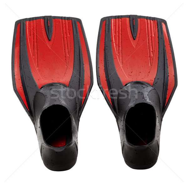 Red swim fins Stock photo © BSANI