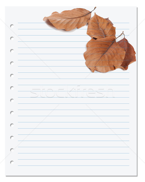 Notebook paper with autumn virginia creeper leaf Stock photo © BSANI
