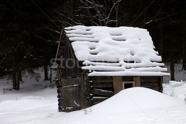 Old wooden hut covered with new-fallen snow in winter forest at  Stock photo © BSANI