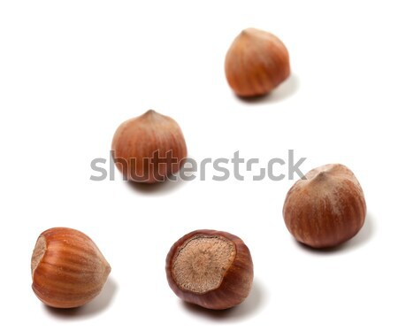 Brown hazelnuts on white background Stock photo © BSANI