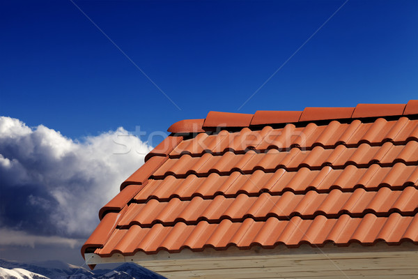 Roof tiles and blue sky in nice day  Stock photo © BSANI