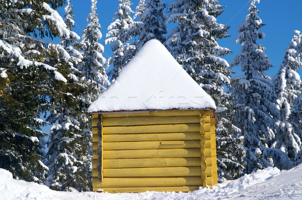 Log cabin in snowy forest Stock photo © BSANI