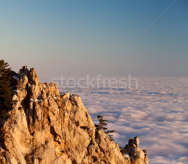 Evening rocks and sea in clouds Stock photo © BSANI