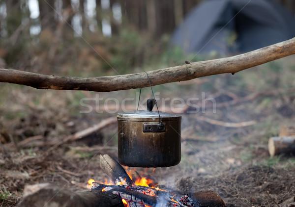 Főzés üst tábortűz erdő fa fém Stock fotó © BSANI