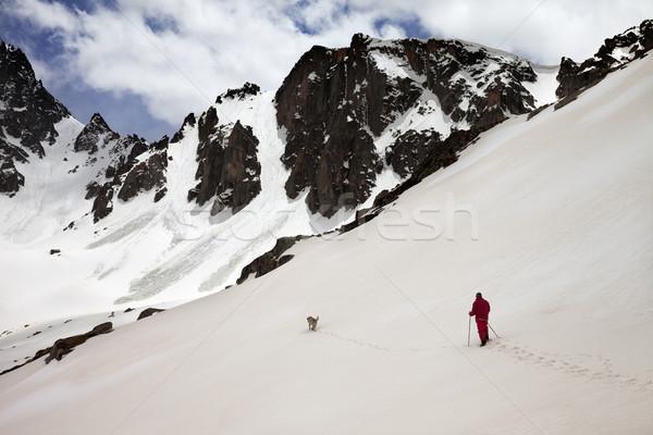 ハイカー 犬 雪 山 春 午前 ストックフォト © BSANI