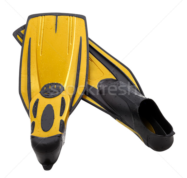 Pair flippers for diving with water drops Stock photo © BSANI