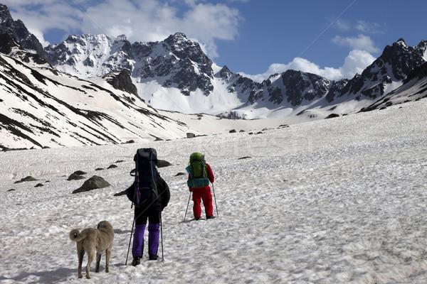 Iki hikers köpek bahar dağlar Türkiye Stok fotoğraf © BSANI