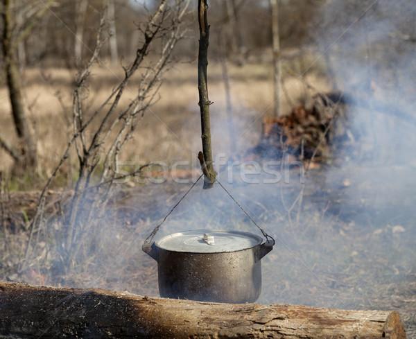 Foto stock: Cozinhar · caldeirão · fogueira · primavera · floresta · fogo