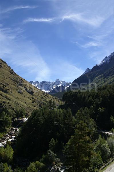 Kafkaslar dağlar ahşap spor manzara kaya Stok fotoğraf © BSANI