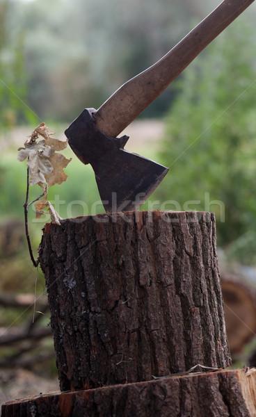 斧 オーク 木材 森林 葉 レトロな ストックフォト © BSANI