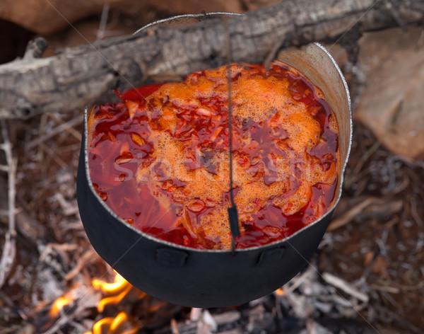 Cooking borscht (Ukrainian traditional soup) on campfire Stock photo © BSANI