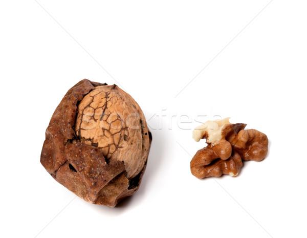 Walnut isolated on white background Stock photo © BSANI