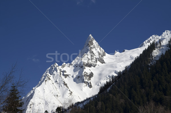 Mountain peak Stock photo © BSANI