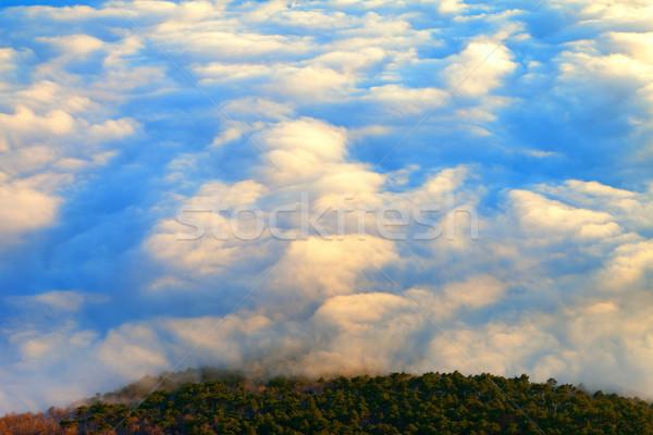 幻想的な 島 雲 鳥 眼 パノラマ ストックフォト © BSANI