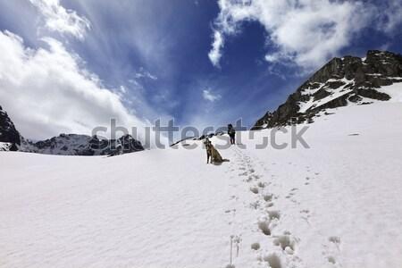 Köpek hikers kar dağ güneş gün Stok fotoğraf © BSANI