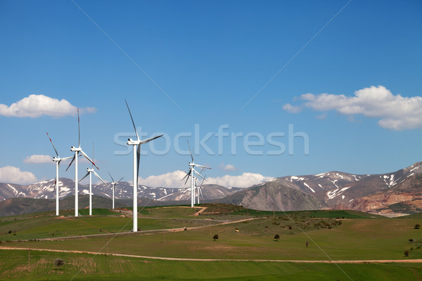 Wind farm at sun spring day Stock photo © BSANI