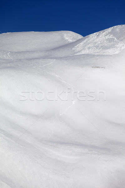 Avalanche on off piste slope Stock photo © BSANI