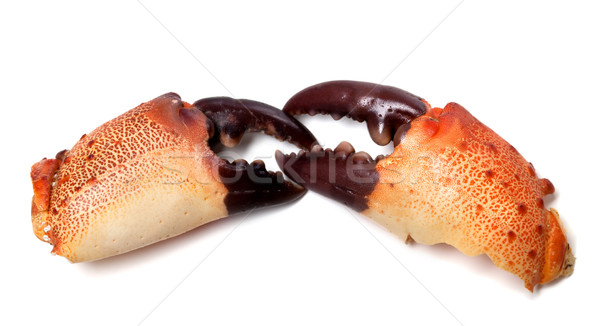 Two boiled pincers from crab Stock photo © BSANI