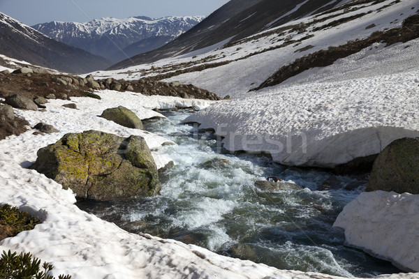 River with snow bridges in spring mountains at sun day Stock photo © BSANI