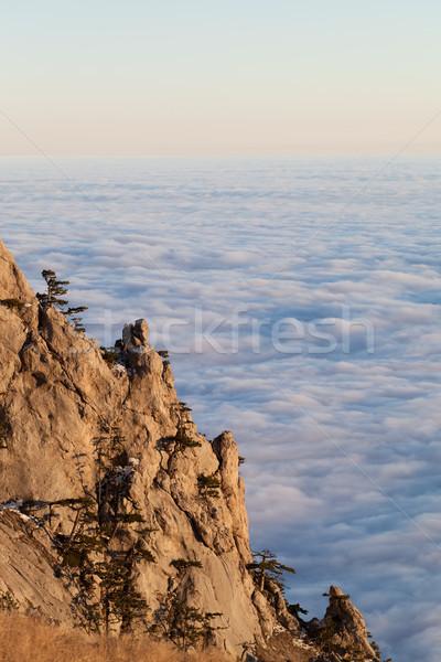 Mer nuages arbre bois forêt Photo stock © BSANI