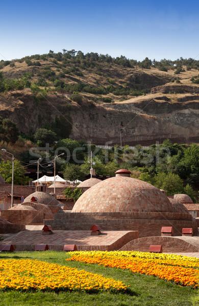 Géorgie été ciel arbre herbe bâtiment Photo stock © BSANI