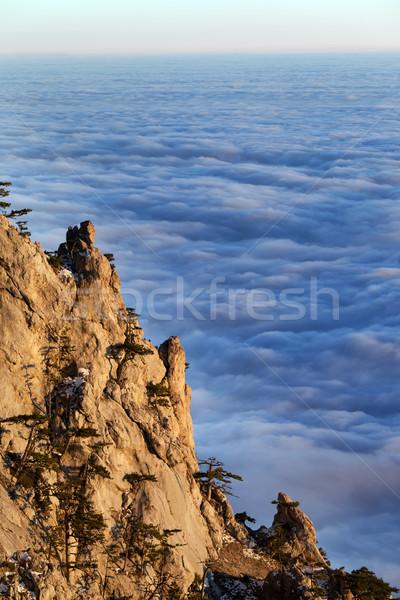 Mer nuages noir arbre forêt Photo stock © BSANI