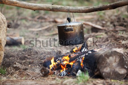 Pişirme kazan kamp ateşi orman yangın sıcak Stok fotoğraf © BSANI