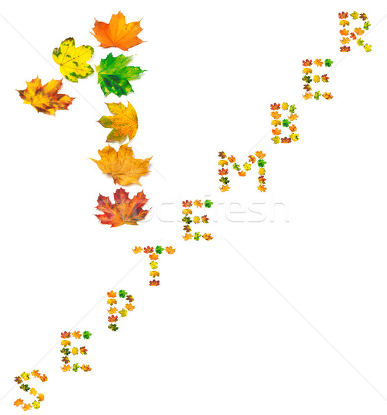 Text S E P T E M B E R 1 composed of autumn maple leafs Stock photo © BSANI